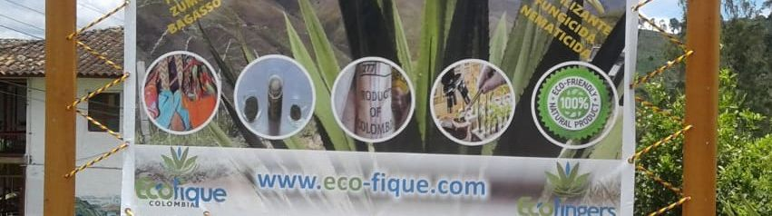 EcoFique Investment Opportunity
